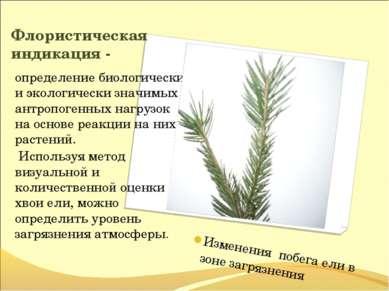 Флористическая индикация - определение биологически и экологически значимых а...