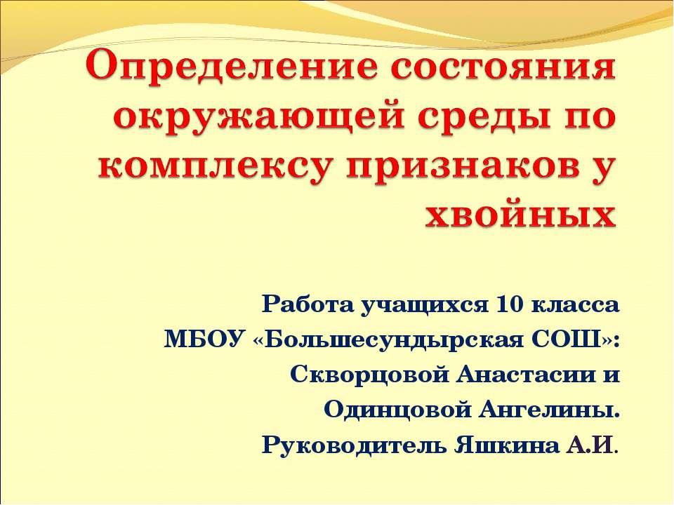 Работа учащихся 10 класса МБОУ «Большесундырская СОШ»: Скворцовой Анастасии и...