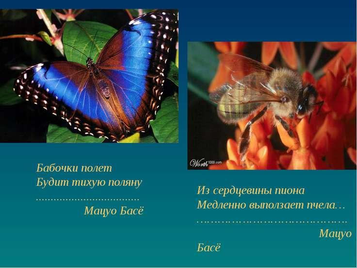 Бабочки полет Будит тихую поляну ................................... Мацуо Ба...