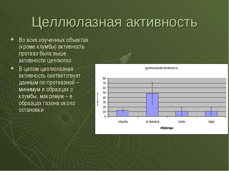 Целлюлазная активность Во всех изученных объектах (кроме клумбы) активность п...