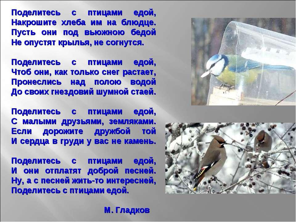 Поделитесь с птицами едой, Накрошите хлеба им на блюдце. Пусть они под вьюжно...