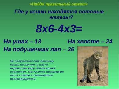 «Найди правильный ответ» Где у кошки находятся потовые железы? 8х6-4х3= На уш...