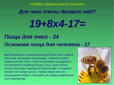 «Найди правильный ответ» Для чего пчелы делают мёд? 19+8х4-17= Пища для пчел ...