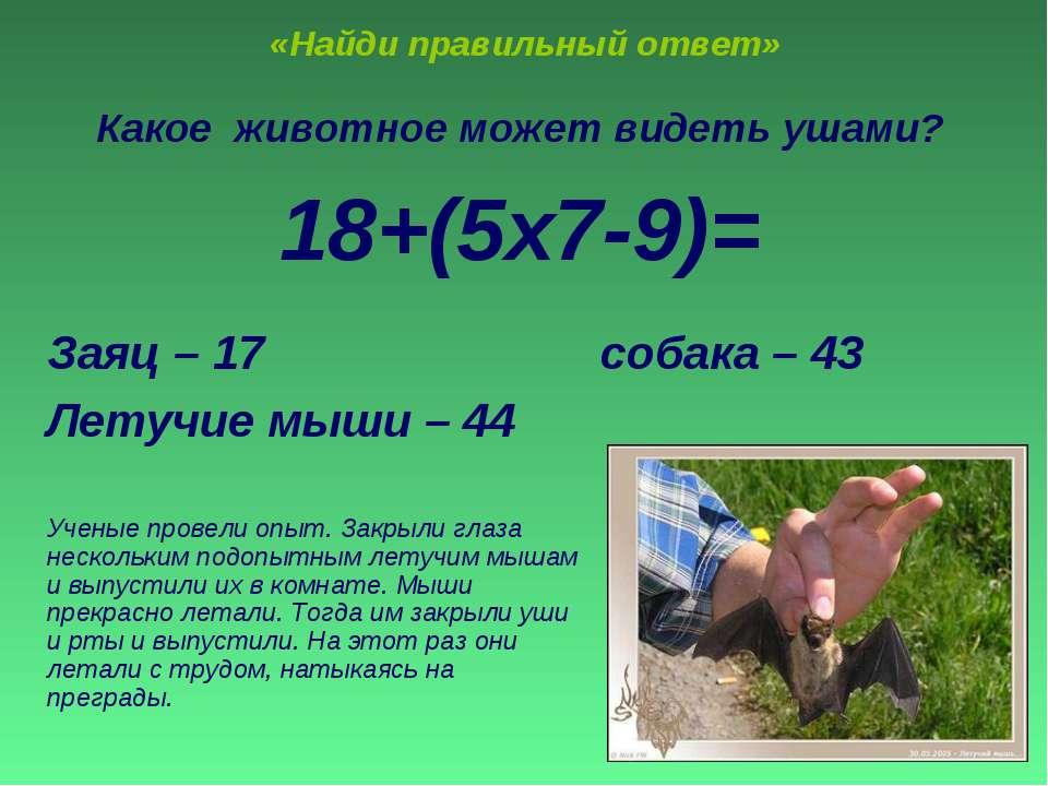 «Найди правильный ответ» Какое животное может видеть ушами? 18+(5х7-9)= Заяц ...