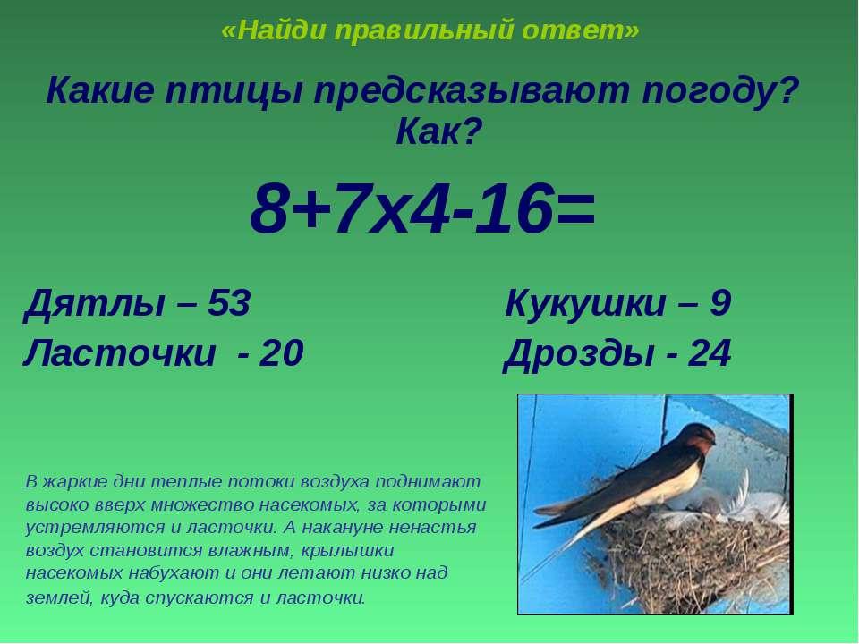 «Найди правильный ответ» Какие птицы предсказывают погоду? Как? 8+7х4-16= Дят...