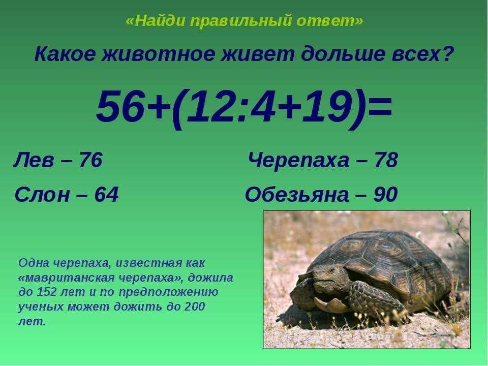 «Найди правильный ответ» Какое животное живет дольше всех? 56+(12:4+19)= Лев ...