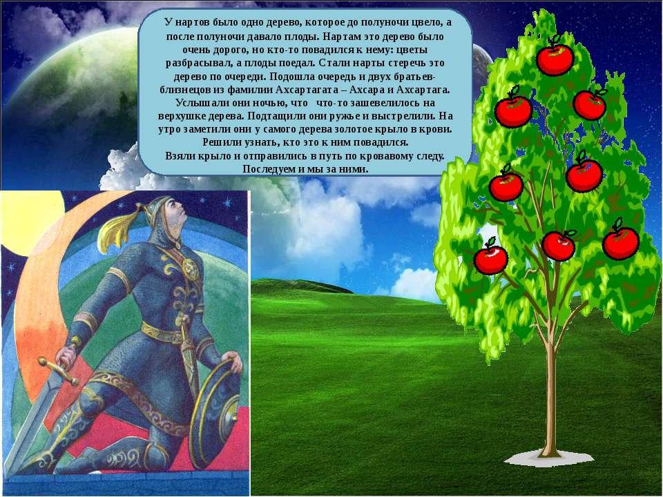 У нартов было одно дерево, которое до полуночи цвело, а после полуночи давало...