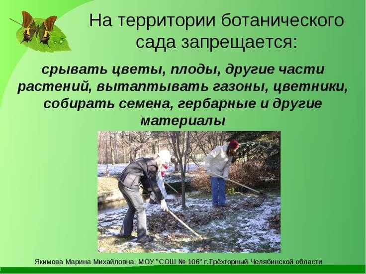 На территории ботанического сада запрещается: срывать цветы, плоды, другие ча...