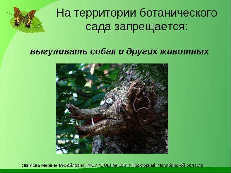 выгуливать собак и других животных На территории ботанического сада запрещает...