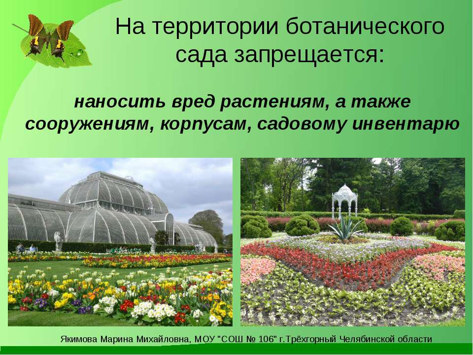 ботанический сад на тему картинки