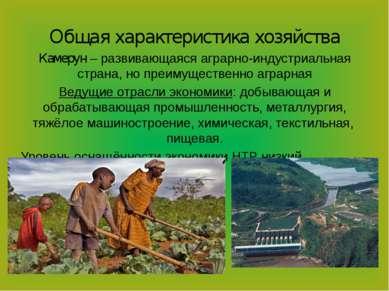 Общая характеристика хозяйства Камерун – развивающаяся аграрно-индустриальная...