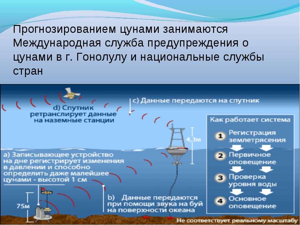 Прогнозированием цунами занимаются Международная служба предупреждения о цуна...