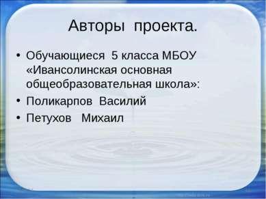Авторы проекта. Обучающиеся 5 класса МБОУ «Ивансолинская основная общеобразов...