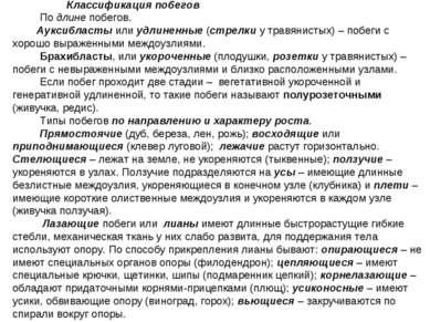 Классификация побегов По длине побегов. Ауксибласты или удлиненные (стрелки у...
