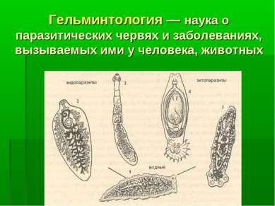 Гельминтология — наука о паразитических червях и заболеваниях, вызываемых ими...