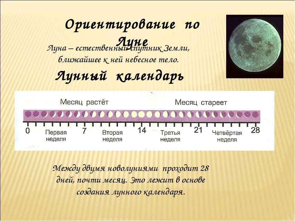 Ориентирование по Луне Луна – естественный спутник Земли, ближайшее к ней неб...