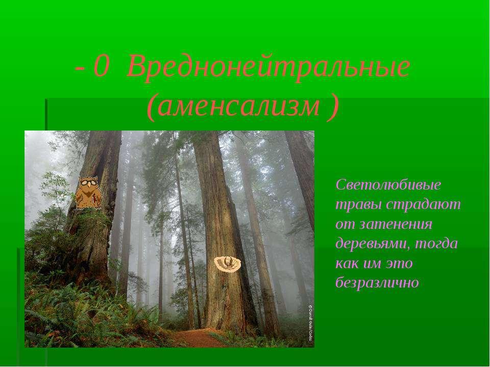 - 0 Вреднонейтральные (аменсализм ) Светолюбивые травы страдают от затенения ...