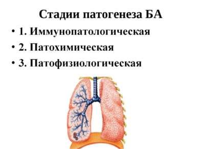 Стадии патогенеза БА