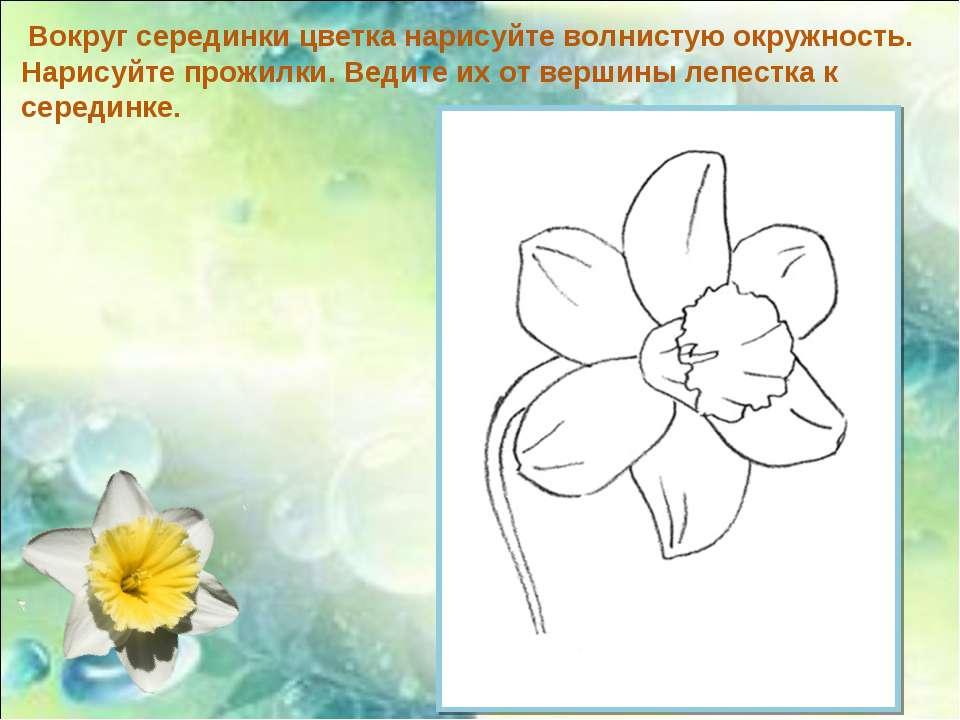 Вокруг серединки цветка нарисуйте волнистую окружность. Нарисуйте прожилки. В...