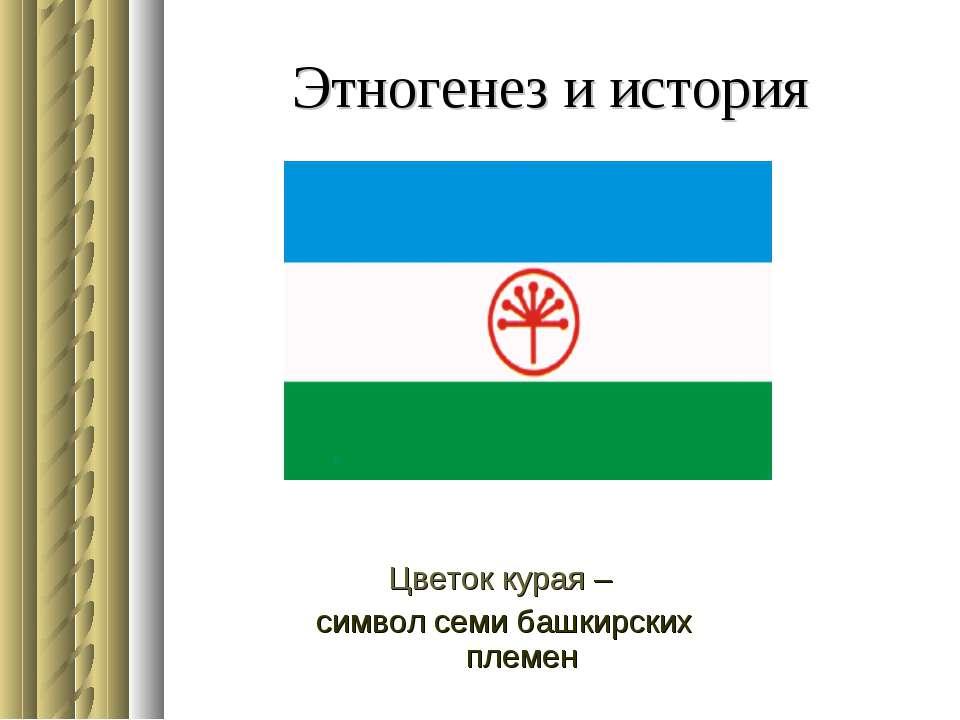 Этногенез и история Цветок курая – символ семи башкирских племен
