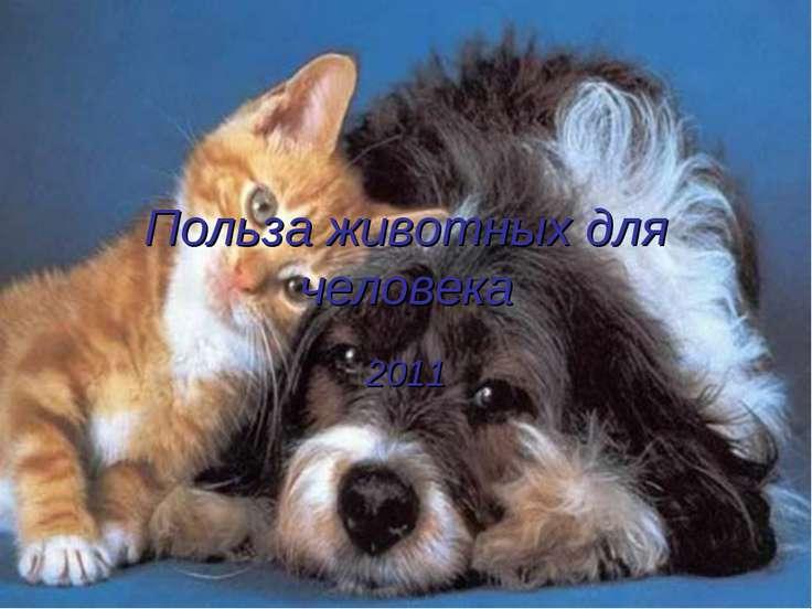 Польза животных для человека 2011