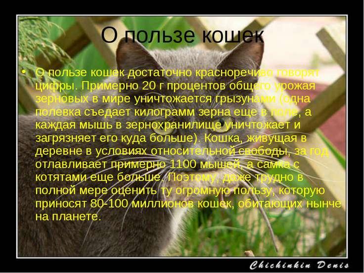 О пользе кошек О пользе кошек достаточно красноречиво говорят цифры. Примерно...