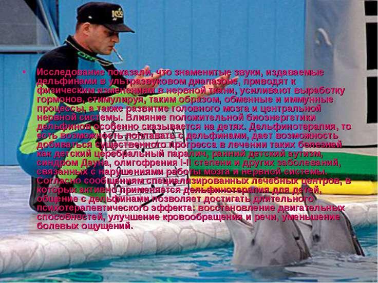 Исследование показали, что знаменитые звуки, издаваемые дельфинами в ультразв...