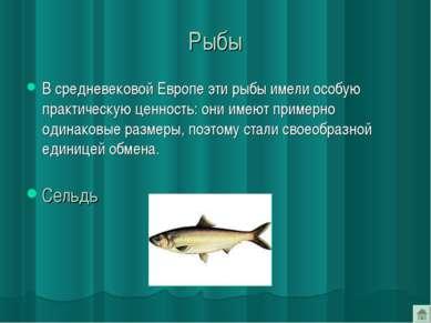 Рыбы В средневековой Европе эти рыбы имели особую практическую ценность: они ...