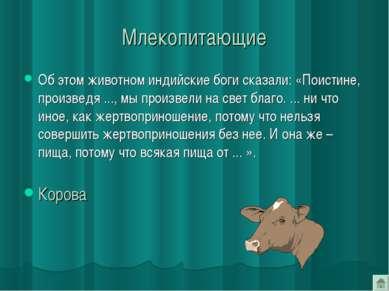 Млекопитающие Об этом животном индийские боги сказали: «Поистине, произведя ....