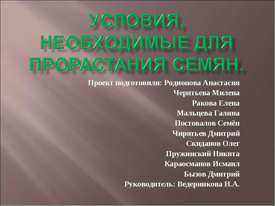 Проект подготовили: Родионова Анастасия Черятьева Милена Ракова Елена Мальцев...