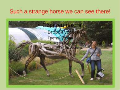 Such a strange horse we can see there!