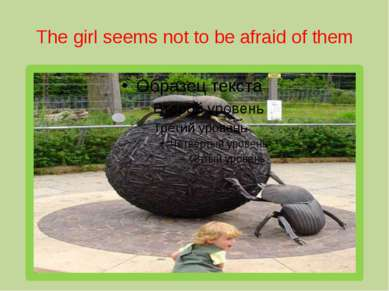 The girl seems not to be afraid of them