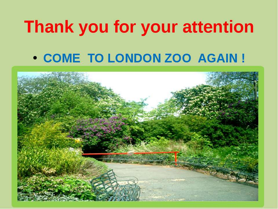 Thank you for your attention COME TO LONDON ZOO AGAIN !