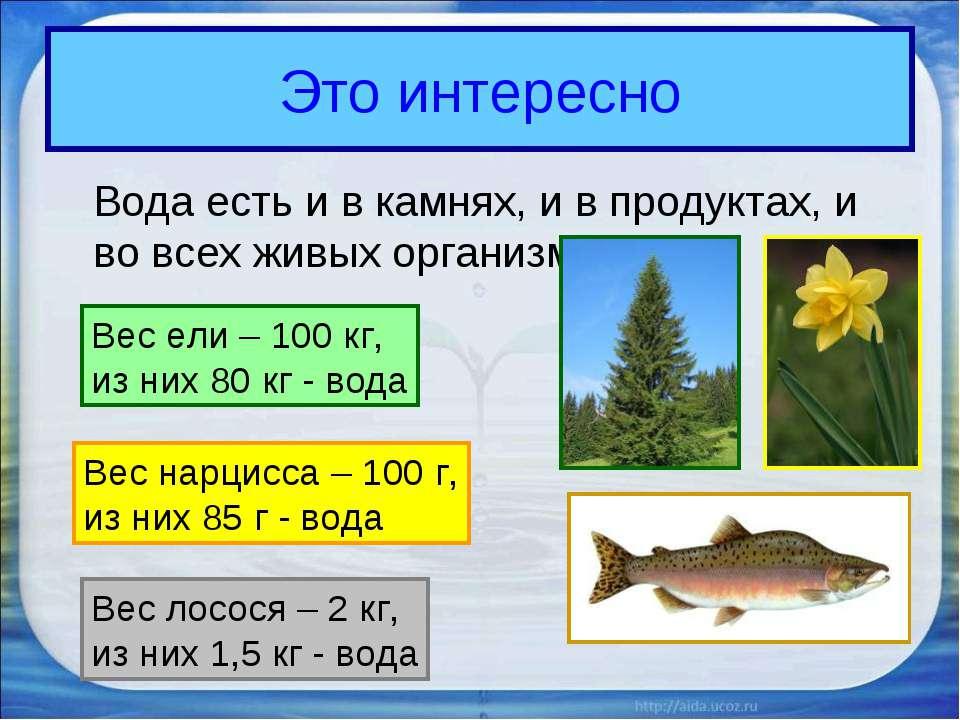 Это интересно Вода есть и в камнях, и в продуктах, и во всех живых организмах...