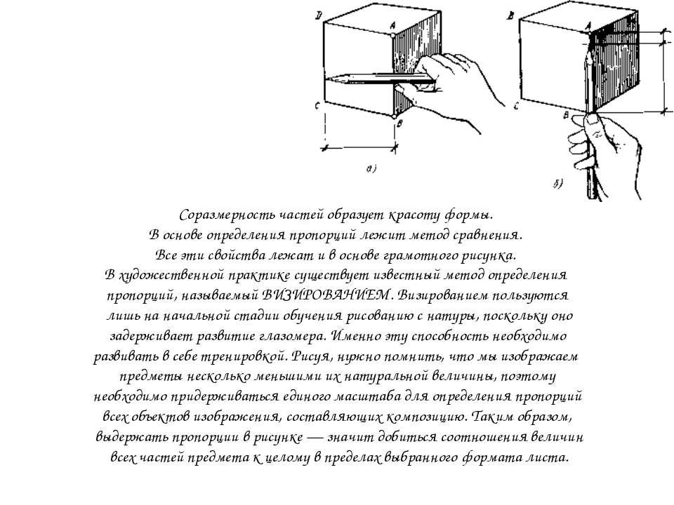 Соразмерность частей образует красоту формы. В основе определения пропорций л...
