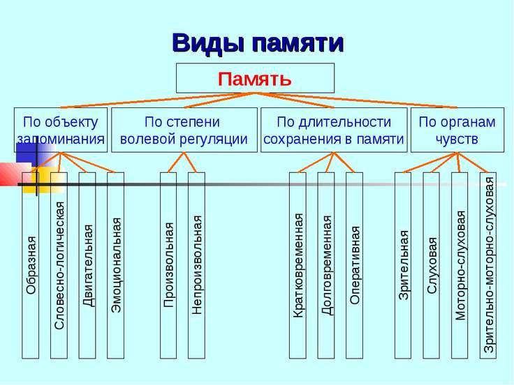 Виды памяти Память По объекту запоминания По степени волевой регуляции По дли...