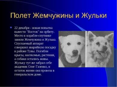 """Полет Жемчужины и Жульки 22 декабря - новая попытка вывести """"Восток"""" на орбит..."""