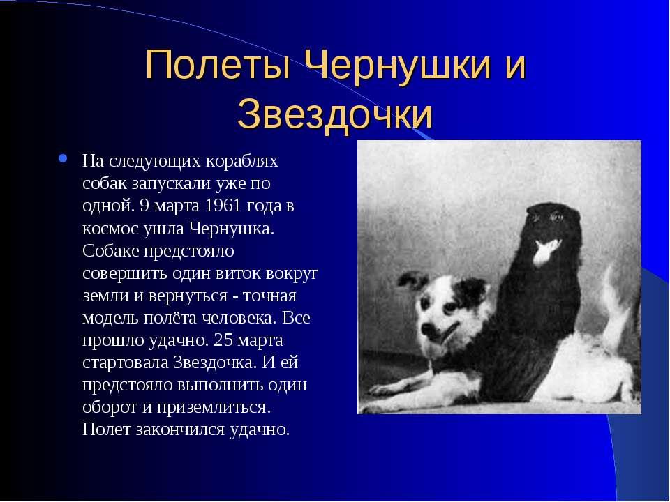 Полеты Чернушки и Звездочки На следующих кораблях собак запускали уже по одно...