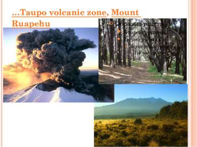 …Taupo volcanic zone, Mount Ruapehu