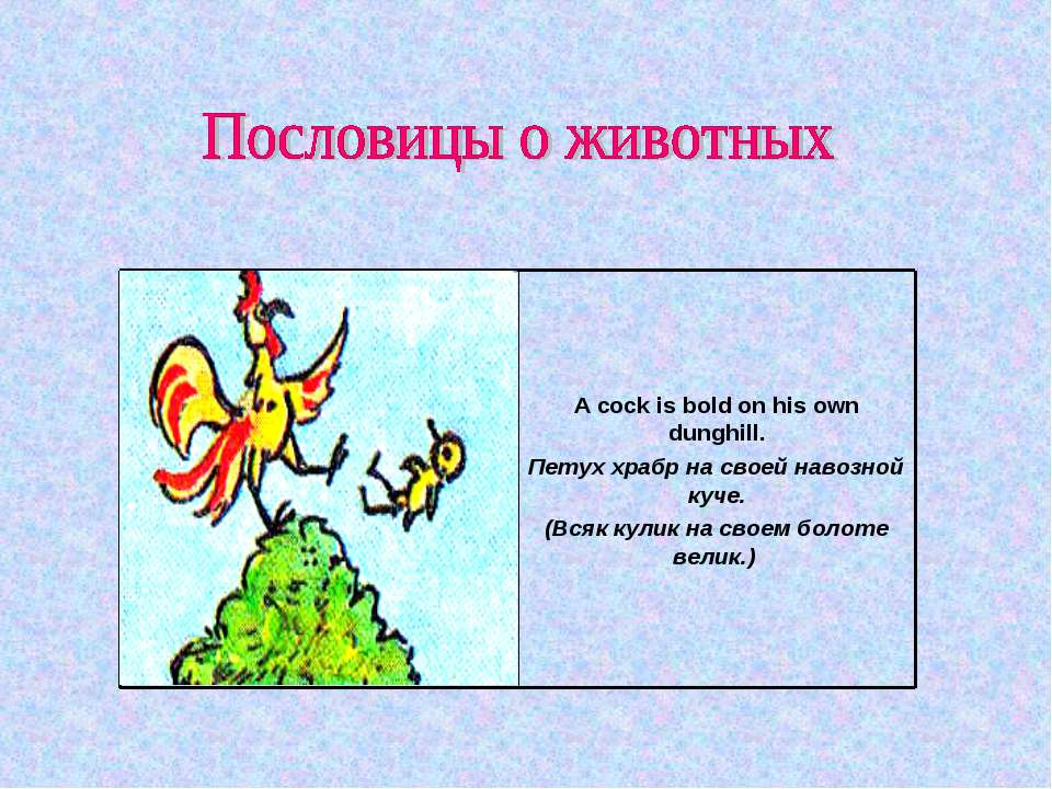 Пословица на английском языке про животных с переводом