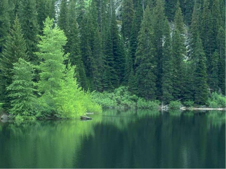 Широка страна моя родная. Много в ней лесов, полей и рек. Я другой такой стра...