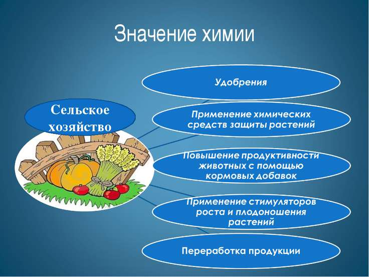 Сельское хозяйство Значение химии