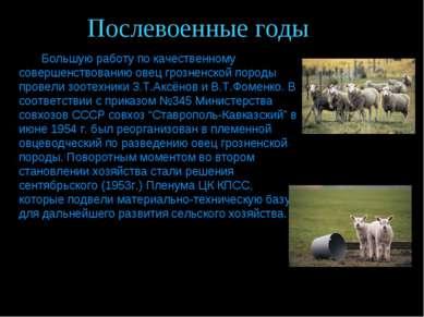 Послевоенные годы Большую работу по качественному совершенствованию овец гроз...