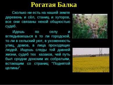 Рогатая Балка Сколько ни есть на нашей земле деревень и сёл, станиц и хуторов...