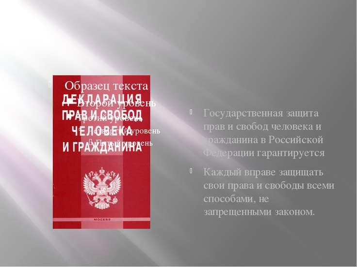Государственная защита прав и свобод человека и гражданина в Российской Федер...