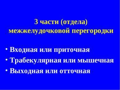 3 части (отдела) межжелудочковой перегородки Входная или приточная Трабекуляр...