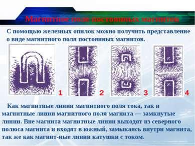 Магнитное поле постоянных магнитов С помощью железных опилок можно получить п...