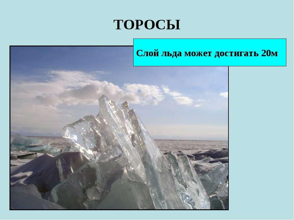 ТОРОСЫ Слой льда может достигать 20м
