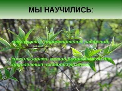 МЫ НАУЧИЛИСЬ: работать с определителем растений; использовать метод биоиндика...