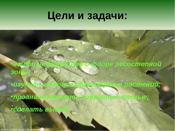 Цели и задачи: найти информацию о флоре лесостепной зоны; изучить видовое раз...